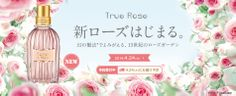 新ローズはじまる。 True Rose