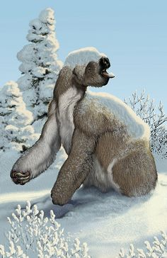 ground sloth in winter