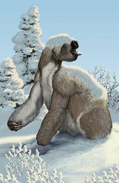 Megalonyx; Ground Sloth; Late Miocene to Pleistocene, 10.3–0.011; Mammalia (Xenarthra);Described by Harlan, 1825; Artwork by MaCarl Buell?