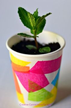 Mod Podge a container using paper shapes and make a planter for Mother's Day.