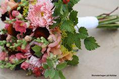 bukett september med sommerasters, solhatt, løvemunn, astilbeblader,