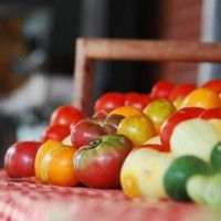 Food that Saves You Money: Shortlist of Vegetables for Your Urban Garden