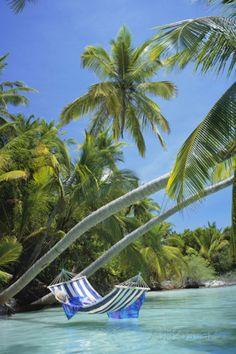 Naar een hagelwit strand, azuurblauwe zee en daar niks doen, behalve de hele dag in een hangmat liggen tussen twee palmbomen in, met verse cocktails!