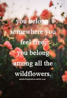 You belong somewhere you feel free. You belong among all the wildflowers.