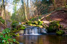 badger dingle waterfall - Google Search