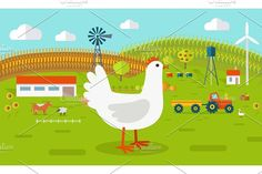 Hen on Farmyard Graphics Farmyard vector illustration. Flat design. Hen standing against the farm landscape, tractor, cow, fi by robuart