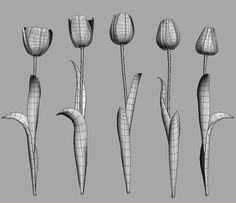 realistic flowers vol 1 model Maya Modeling, Polygon Modeling, 3ds Max Tutorials, Cgi 3d, Flower Model, Object Photography, 3d Tutorial, 3d Fashion, 3d Artwork