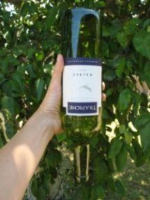 Wine Bottle Waterer - Great Gardening Ideas