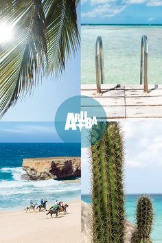 What makes Aruba the best island vacation destination in the entire Caribbean? Find out why so many people choose to visit Aruba year after year! Vacation Places, Vacation Destinations, Vacation Trips, Dream Vacations, Vacation Spots, Places To Travel, Places To Visit, Wedding Destination, Destination Voyage