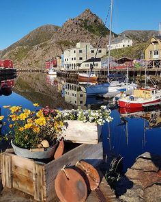 Summer mood in Nyksund, Vesterålen☀️ by @mariannef.pettersen Thank you for tagging #ig_nordnorge