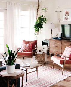 Vintage Style Minimalist Living Room Space with Retro Mid-Century Furnishings and Indoor Plants