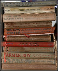 loved Laura Ingalls Wilder books. I read Farmer Boy over and over!