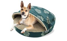 Precious Tails Teal Canvas Round Cave Hamburger Pet Bed with Plush Fleece Interior and Medallion Print 35' *** New and awesome dog product awaits you, Read it now  : Pet dog bedding