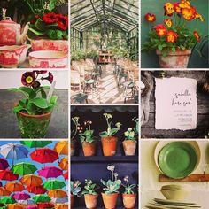 Spring Wedding Inspiration, Wedding Ideas, Summer Wedding, Flowers, Floral, Royal Icing Flowers, Florals, Wedding Ceremony Ideas, Flower