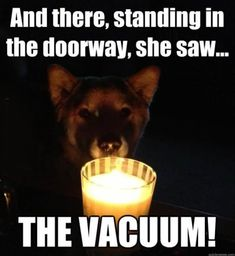 And there, standing in the doorway, she saw...THE VACUUM!