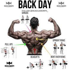 back day back exercise back workout gym bodybuilding fitness musclemorph musclemorphsupps…. Back Day Back Exercise Back Training Gym Bodybuilding Fitness Muscle Change musclemorphsupps …. Fitness Workouts, Weight Training Workouts, Gym Workout Tips, Fitness Tips, Fitness Motivation, Week Workout, Daily Motivation, Workout Fitness, Muscle Building Workouts