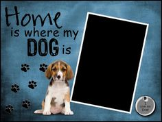 Beagle 8x6 Framed Pawprints Picture Matte by SapphireCustomPhotos, $14.00