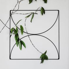 Bow grid metal wire wall grid on a concrete wall with bamboo branch. Plant support / memo board / bulletin board / Stockholm office / Nordic Design / Scandinavian style /// Designed by Wallment Nordic Design, Nordic Style, Scandinavian Design, Metal Grid, Plant Supports, Nordic Interior, Grid Design, Concrete Wall, Baskets On Wall