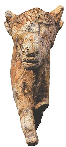 Bison sculpted from mammoth ivory. Found at Zaraysk, Russia, about 20,000 years old. Zaraysk Museum of Art and History. Dr Sergey Lev.