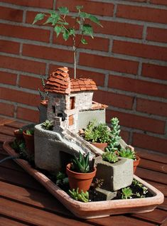 #pots #garden #succulents #cement No Linde - Incremental Mini-Gardens http://nolinde.com/