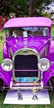 Purple--.Re-Pin brought to you by #CarInsuranceagents at #HouseofInsurance in #EugeneOregon