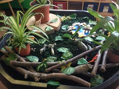 Jungle small world Handas Surprise, Rumble In The Jungle, Rainforest Theme, Dear Zoo, Jungle Theme Parties, Tuff Spot, Creative Area, Nursery Activities, Infant Classroom