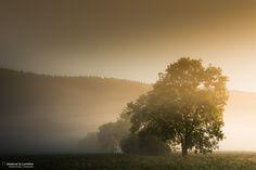 Un matin, au jour levant, cette brume sur le Val-de-Ruz, Neuchâtel, Suisse