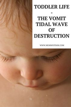 Toddler Life – The Vomit Tidal Wave of Destruction - There are many things you deal with as a parent that you never knew existed- and some of them you probably wish didn't! A classic – projectile vomit.