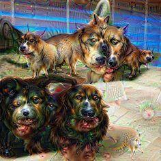 https://manboobz.files.wordpress.com/2015/07/dogs.jpg?w=604