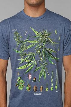 FUN Artists Botany Tee