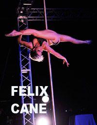 Felix Cane