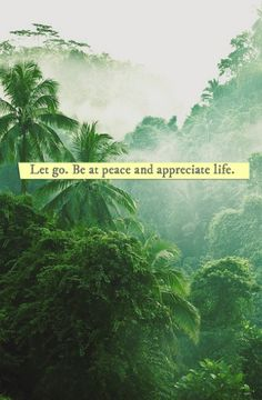 let go. be at #peace and appreciate life