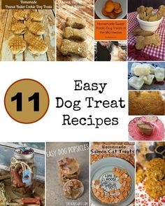 11 of the Easiest & Tastiest Homemade Dog Treat Recipes: Looking for super easy homemade dog treat recipes that your canine companion will love? Try these 11 tasty treats, all using simple ingredients! Which is your favorite?