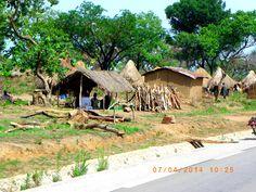 Matinée ensoleillée à l'Est-Cameroun