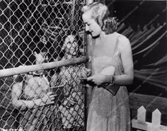 candid photo Carole Lombard signing autographs for some kids 712-07
