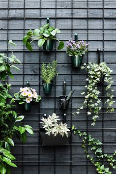 34 Nice Outdoor Hanging Plants Design Ideas - Every home becomes cozier with some hanging or potted indoor plants. For the garden or along the front walkway, outdoor artificial plants will do. Hanging Plants Outdoor, Outdoor Walls, Outdoor Living, Indoor Outdoor, Outdoor Wall Planters, Plants Indoor, Hanging Planters, Hanging Plant Wall, Outdoor Balcony