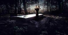 Η ΜΟΝΑΞΙΑ ΤΗΣ ΑΛΗΘΕΙΑΣ: «Θαμμένος ζωντανός» – Το βίντεο που κόβει την ανάσ...