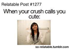 Crush Posts | ... LOL funny gifs funny gif true true story humor crush so true relatable