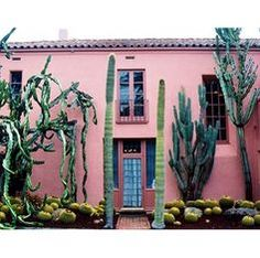 Mexico is waiting for us - pink facade, huge cactus / architecture Exterior Design, Interior And Exterior, Casa Patio, Sweet Home, Pink Houses, Green Houses, Cacti And Succulents, Pink Succulent, Interior Architecture