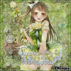 Minami Kotori ~ ❝Flower A Fleeting Love Is Blooming Suspiciously❞