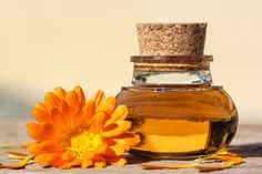 """There's so much to calendula oil that people should know about. Also called the """"African marigold"""", calendula has been used in traditional medicine in Chin Beauty Network, Calendula Oil, Calendula Benefits, Flower Oil, Oil Uses, Aloe Vera Gel, Diy Beauty, Home Remedies, Coconut Oil"""