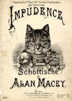 "vintage sheet music - Title: ""Impudence"",  Music: Alan Macey,  Lyrics: Nihil / Illustrator: W. Spalding / Publisher: Broome, W. H. (Holborn, 15 - London)  pp. 2"