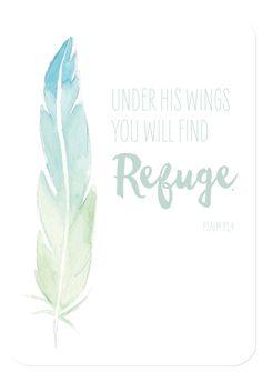 """Bibelvers auf der Postkarte: """"Under his wings you will find refuge."""" - Psalm 91,4"""