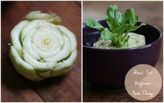 Vegetables Buy Once And Regrow Forever-Bok Choy