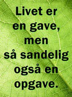 Livet er en gave...