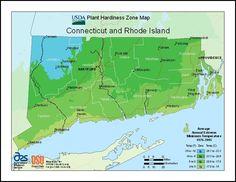 USDA Plant Hardiness ct_ri zones http://www.joenesgarden.com/winter-review-hardiness-zones/