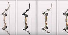 How To Choose The Right Bow For What You Are Hunting!