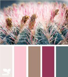 Color palette by Design Seed, Cactus Light Palettes Color, Colour Pallette, Color Palate, Colour Schemes, Color Combos, Color Patterns, Decoration Palette, Cactus E Suculentas, Cactus Light