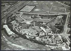 Diergaarde Blijdorp 1964