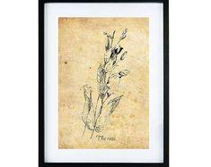 The rose | illustratie | rozen | roos | inkt | bloem | print | digitale prints | muur decoratie | poster